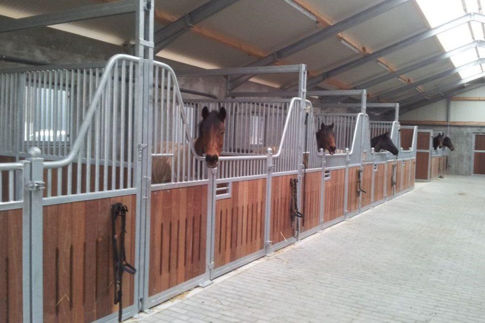 Pferdestall mit Stallboxen