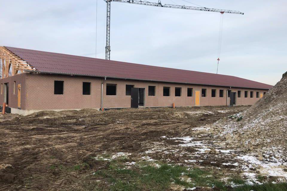 217159 Schweinemststall Altenberge 5