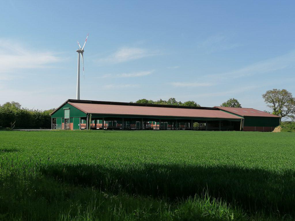 Rindermastanlage Münsterland